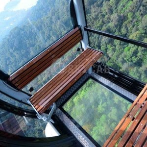 SkyCab with Glass Bottom Gondola